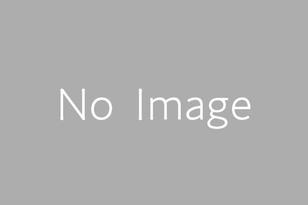 0.1ミリの画像